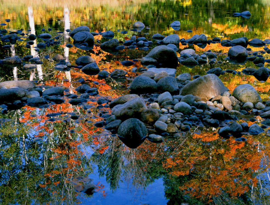 Island Trader Vacations Reveals The Best Fall Foliage Retreats in New England