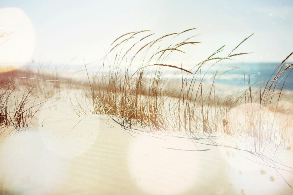 Island Trader Vacations Reviews 3 Great Coastal Michigan B&B's