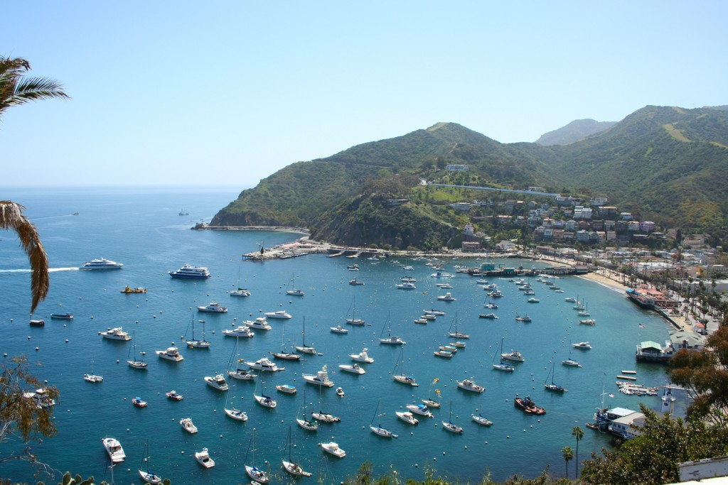 Island Trader Vacations Reviews Santa Catalina Island