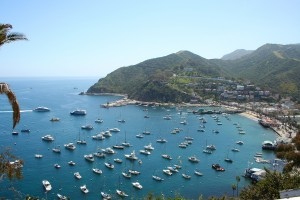 Island Trader Vacations Reviews Santa Catalina Island